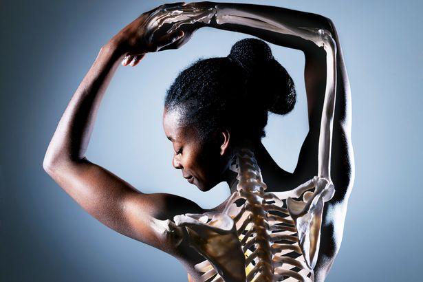 corpo e ossos