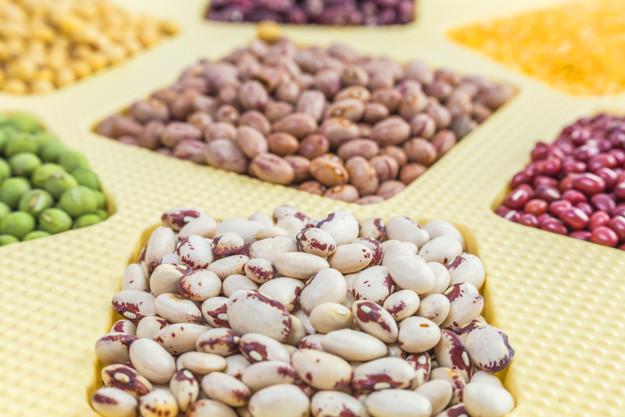 grãos de feijão